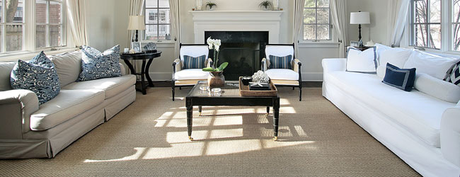 Americlean Carpet & Furniture Cleaning